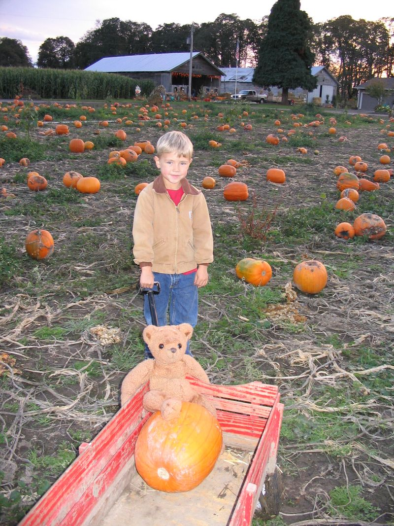 pumpkin patch boy and bear whatmattersmostnow.typepad.com